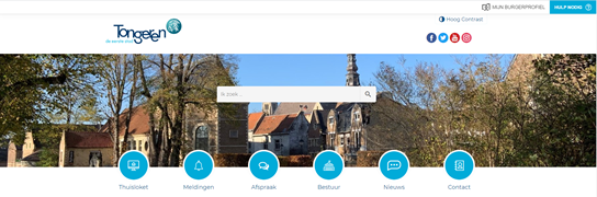 grote weergave screenshot website Tongeren