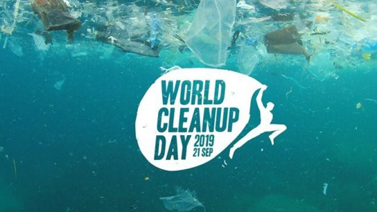 grote weergave Logo World Cleanup Day